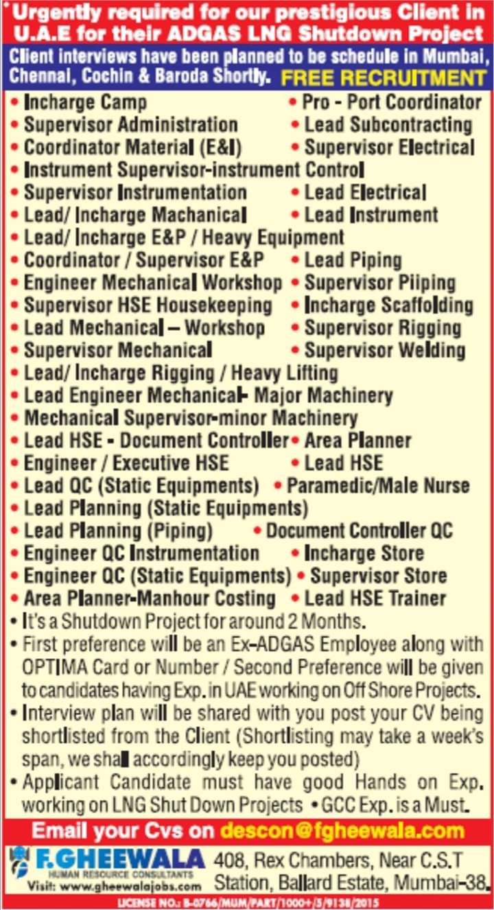 Latest GHEEWALA jobs